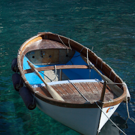 Gentle Floater by Rose Lindquist - Transportation Boats ( water, cinque terre, reflection, wood, boat, clear, tranquil, vacation, turquoise, blue, idyllic, paddle boat, italy, paddle )