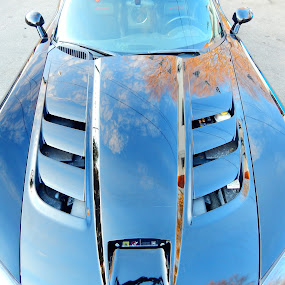 2003 Dodge Viper convertible SRT10 by TONY LOPEZ - Transportation Automobiles ( sport car, detail, classic car, speed, 2003, dodge, fast, black, viper,  )