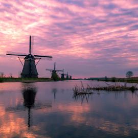 Field of Windmills in Kinderdijk by Siniša Ciglenečki - Landscapes Travel ( water, reflection, morning, daybreak, spring, netherlands, dawn, nature, kinderdijk, holland, outdoors, cloudy, springtime, 20150411, windmill )