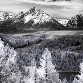 Classic Tetons by Ken Smith - Black & White Landscapes ( black and white, snake river, landscape, grand tetons )