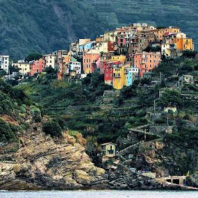 Corniglia - Cinque Terre by Bernarda Bizjak - City,  Street & Park  Vistas (  )