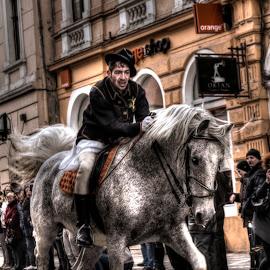Horse by Dan Flimanu - Animals Horses