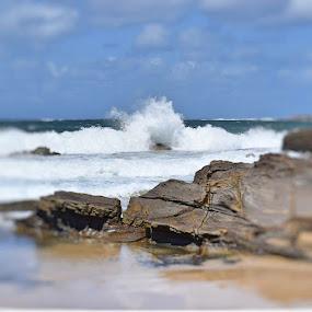 Splash by Amanda Daly - Landscapes Beaches (  )