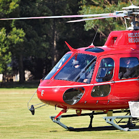 Ready for liftoff by Gary Tew - Transportation Helicopters ( helicopter, tasmania, red, mt field, take off,  )