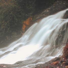 The Cascade by Avishek Bhattacharya - Nature Up Close Water
