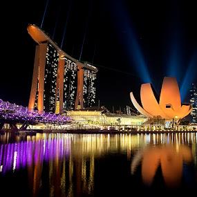 Illumination by Jeffry Surianto - Landscapes Travel (  bay ,  night,  marina, travel. singapore,  sand )