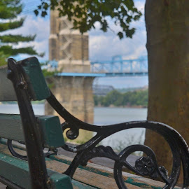 Take a Set by Robin Stover - City,  Street & Park  City Parks ( roebling, park, bench, cincinnati, bridge )