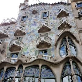 Casa Batlò di Gaudi a Barcellona by Patrizia Emiliani - Instagram & Mobile Android ( gaudi, batlò, casa, spagna, barcellona )