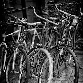 by J W - Transportation Bicycles