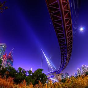 fish bridge by Ryo SiNaga - Buildings & Architecture Bridges & Suspended Structures