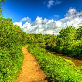 River Path by Steve Rowe - Digital Art Places