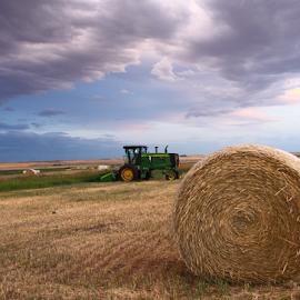 by Brian Robinson - Landscapes Prairies, Meadows & Fields