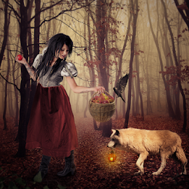 Red riding hood by Sergiu Pescarus - Digital Art People ( forest fog, bird, lantern, red riding hood, red, fog, wolf, basket, white wolf, forest, evening,  )