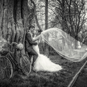 A Quick Kiss by Adrian O'Neill - Wedding Bride & Groom ( love, kiss, tree, bake, veill, bride, mono, groom,  )