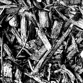 UMM its mulch by Marty Stepalavich - Instagram & Mobile Android