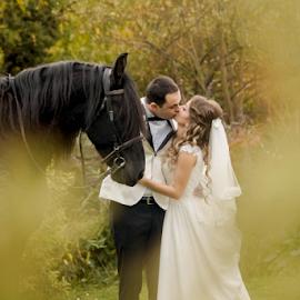 Wedding 10 by Vasiliu Leonard - Wedding Bride & Groom ( fotograf nunta, fotograf nunta iasi, fotograf iasi )