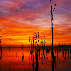 by Roger Becker - Landscapes Sunsets & Sunrises