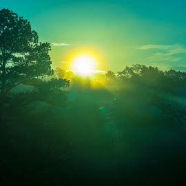 Good Morning 2 by Kelston Williams - Landscapes Weather