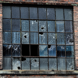 Abandoned Factory Window  by Diane Ljungquist - Buildings & Architecture Decaying & Abandoned
