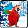 Free Download Amazing Talking Parrot APK for Samsung