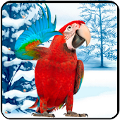 App Amazing Parrot apk for kindle fire