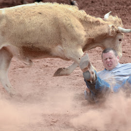 down and dirty by Eva Ryan - Sports & Fitness Rodeo/Bull Riding ( cowboy, dirt, kingfisher ok, steer wrestling, rodeo, man, oklahoma, male )