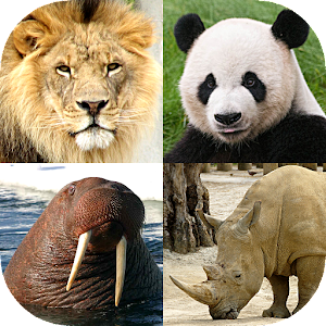 Animals Quiz - Learn All Mammals, Birds and more! For PC / Windows 7/8/10 / Mac – Free Download