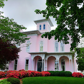 Pretty In Pink by Lorna Littrell - Buildings & Architecture Homes ( pink, architecture, homes, italianate homes, pink homes, antebellum homes )
