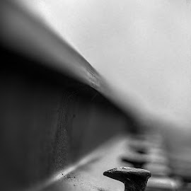 Spike by Mike Thompson - Novices Only Objects & Still Life ( spike, railroad tracks, rails, black and white, railroad, white, rail, dof, close up, black )