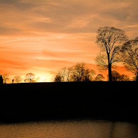 Twilight by Cosmin Lita - Digital Art Places ( clouds, sunset, trees, denmark, shadows )