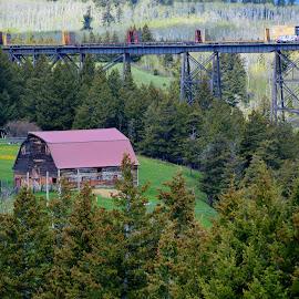 train bridge to Glacier Park MT by Dawna Hall-Kraus - Landscapes Mountains & Hills