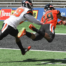 TD by Justin Quinn - Sports & Fitness American and Canadian football
