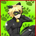 Miraculous Cat Noir Adventure