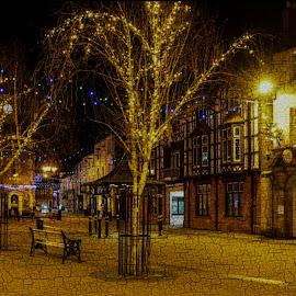 brigg by Kathleen Devai - City,  Street & Park  Markets & Shops ( lights, brigg, tree, art, street, buildings, christmas )
