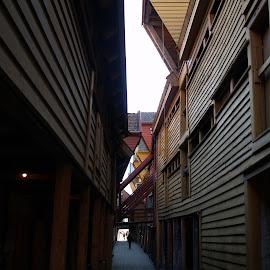 bryggen by Ester Ayerdi - City,  Street & Park  Historic Districts ( history, bergen, wooden, wooden hourses, street, bryggen, historic district, architecture, street scene, unesco, historic, norway )