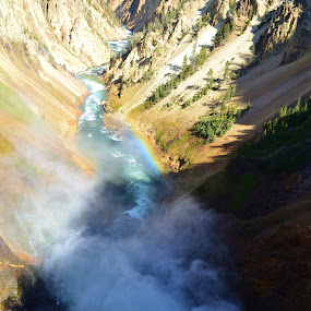 Yellowstone by Cathryn Luna - Landscapes Travel ( yellowstone, waterfall, canyon, travel )