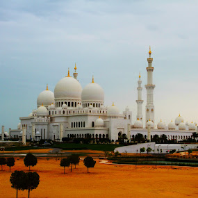 sheikh zayed mosque by Syam Alendu Nair - Buildings & Architecture Statues & Monuments