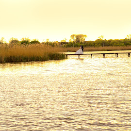 on a lake by Jovan Barajevac - Wedding Bride & Groom ( novi sad, sunset, serbia, wedding, bačka topola, lake )