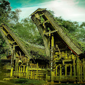 TONGKONAN TORAJA HOUSE by Alfian  Ismail - Buildings & Architecture Homes