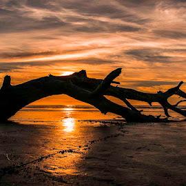 by Jim-Sue Mehrwein - Landscapes Beaches
