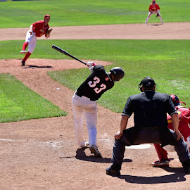 Line Drive by Garry Dosa - Sports & Fitness Baseball ( red, ball, sports, may, teams, bat, black, baseball, competitive, pitching, umpire,  )
