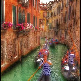 Traffic Jam by Mandy Hedley - Transportation Other ( derelict gondola, traffic, venice, canal )