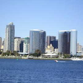San Diego by Prairie Lily - City,  Street & Park  Skylines ( water, cityscapes, san diego, skyline, california )
