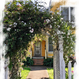 Old Town by Leslie Hunziker - Buildings & Architecture Homes ( entrances, exterior, neighborhood, architecture, flowers, homes )