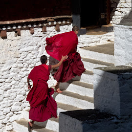 Monks playing by Sue Hobson - People Street & Candids