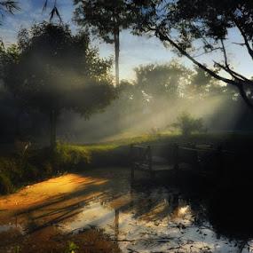 by Danang Sujati - Landscapes Prairies, Meadows & Fields