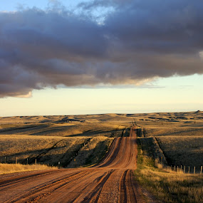 by Tashina Azure - Landscapes Prairies, Meadows & Fields