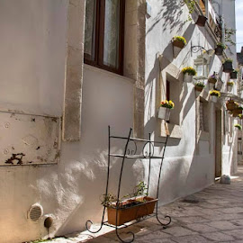 by Domenico Liuzzi - City,  Street & Park  Historic Districts