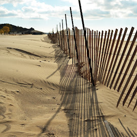 Beach Fence by Robert Coffey - Uncategorized All Uncategorized ( sand, michigan, fence, shorline, beach )