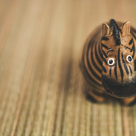 by Monika St - Animals Other ( macro, wooden, vintage, decoration, zebra )